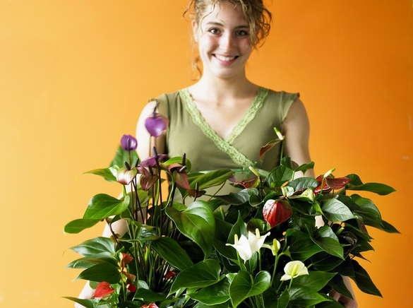 цветы в Сургуте